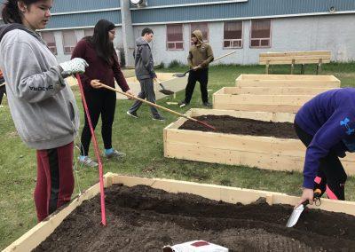Pinehouse Raised Bed Gardens